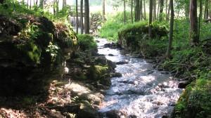 Sarana:Waterfalls1